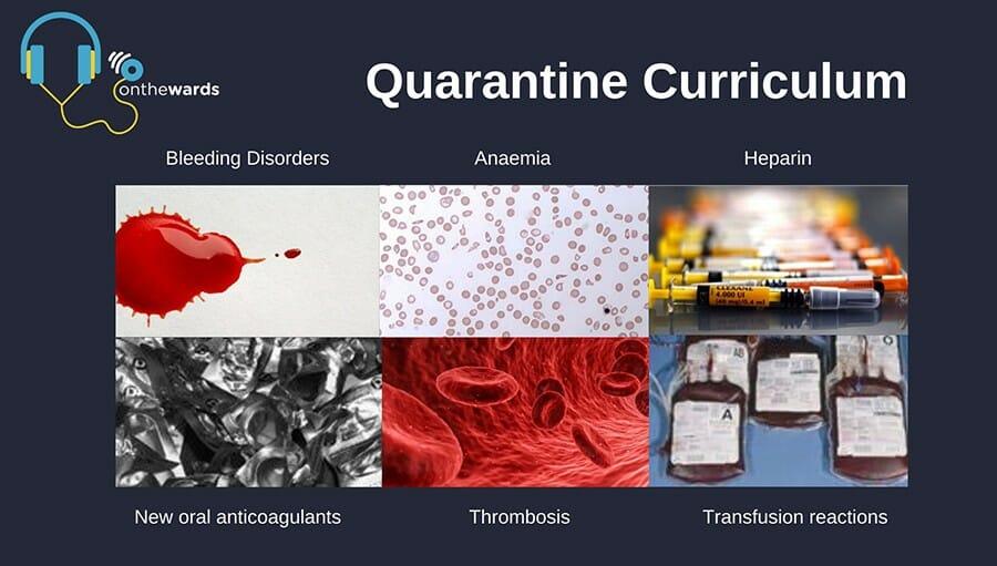 Quarantine Curriculum – Week 12